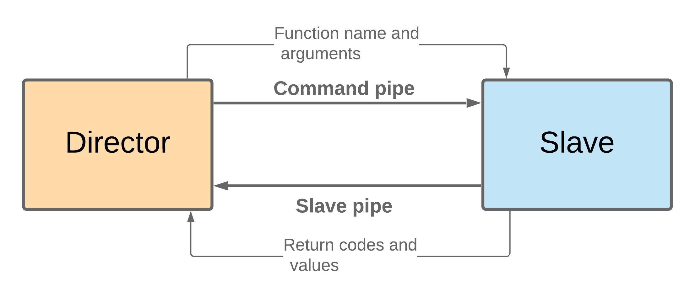 slave-director model
